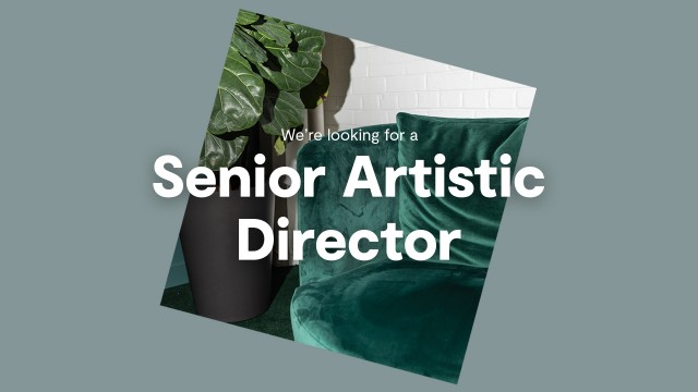 We are looking for a senior artistic director