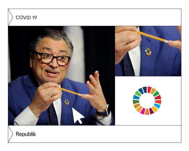What are the Sustainable Development Goals, also called SDGs?